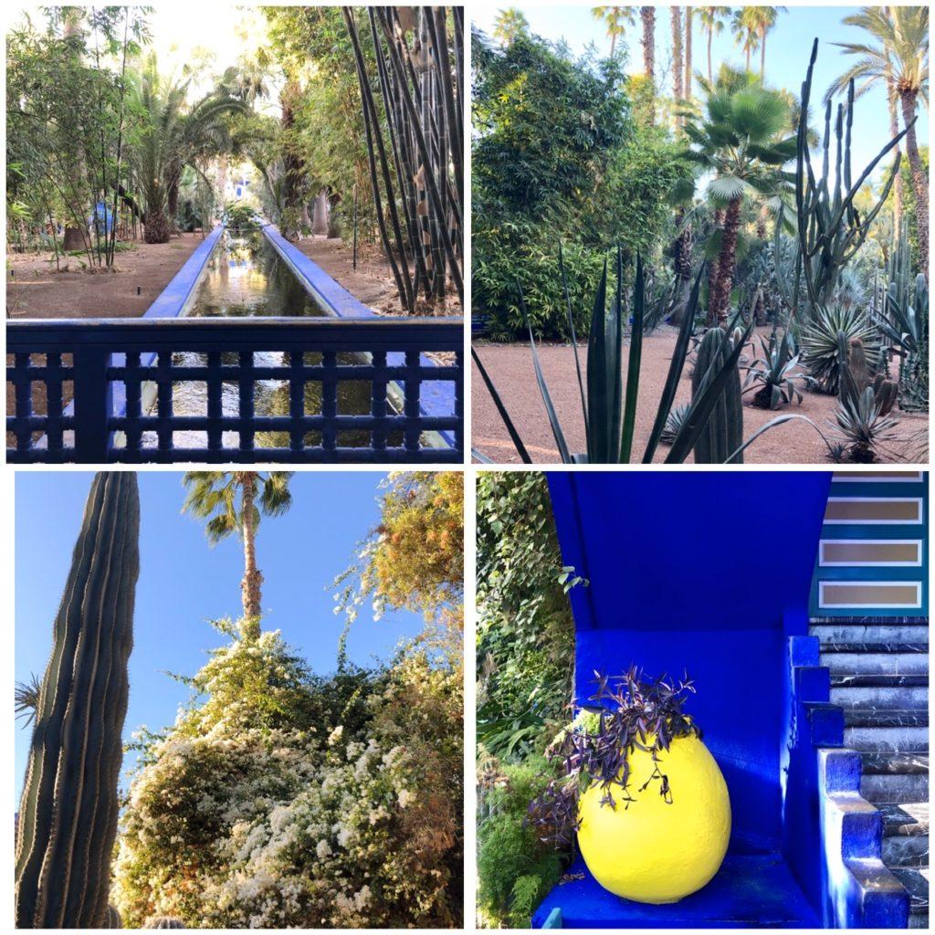 Jardin majorelle, Marrakech, blog quinqua