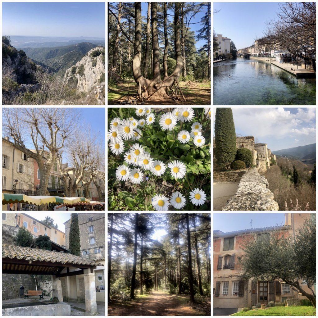 Renouveau eu Provence